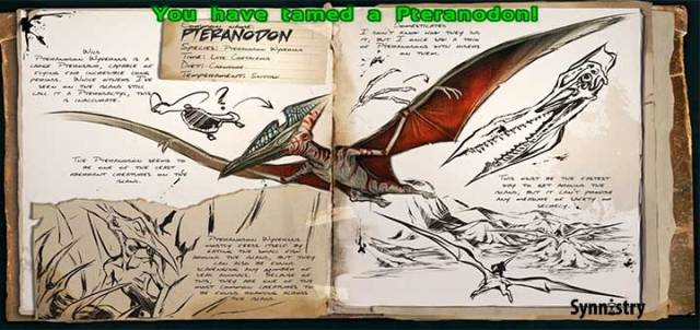 pteratame5
