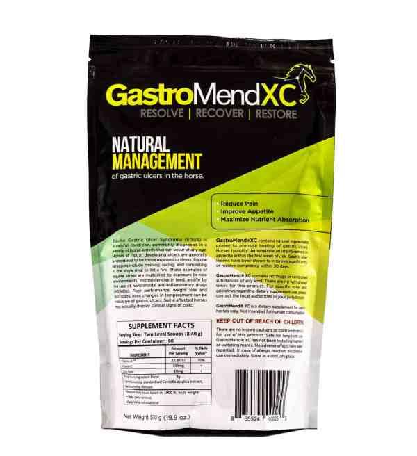 GastroMend XC bag back