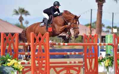 More Horses Are Winning With SynNutra!