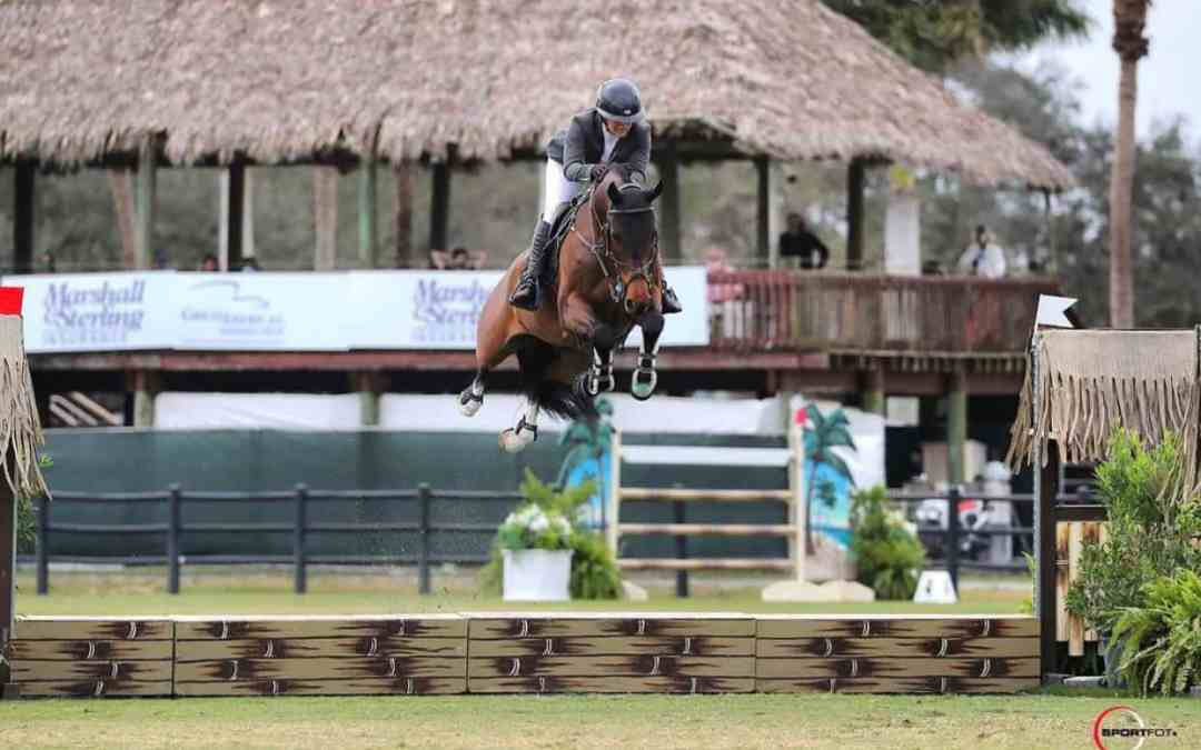 Winning Ways – More Success Stories With SynNutra Equine
