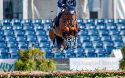 An Unbelievable Horse Rescue, Spring Contest Winner and exciting updates!