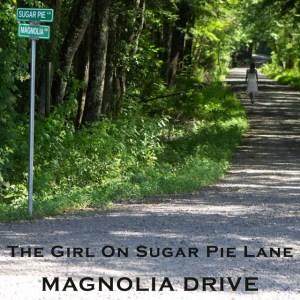 Magnolia Drive, Mountain Fever Records, bluegrass, Syntax Creative - image