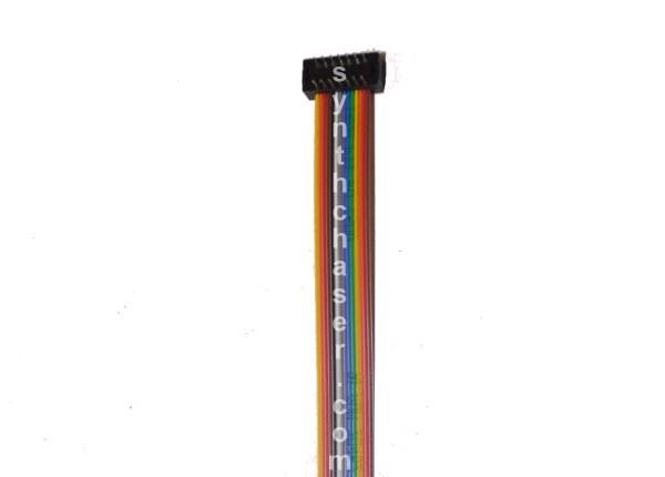 ARP 14 Pin Ribbon Cable