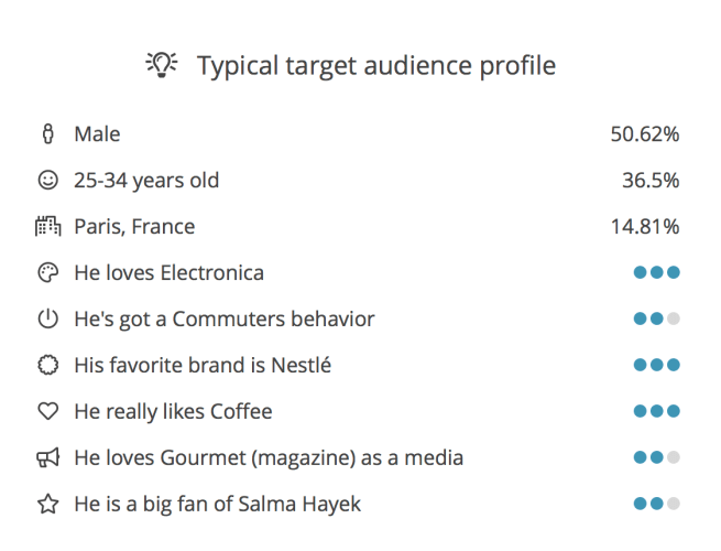 audience-insights-typical-target-audience-profile