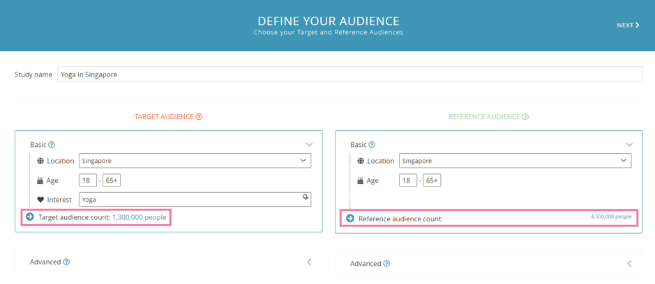 Audience Segmentation on Top 20 Hobby and Activity Interests