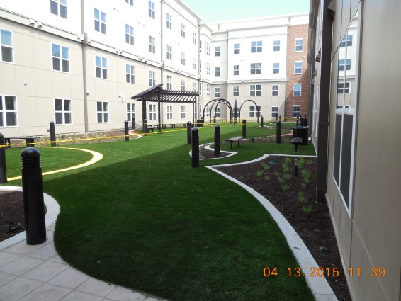 University of Maryland Book Exchange Synthetic Turf International SoftLawn Lawn and Landscape Artificial Grass