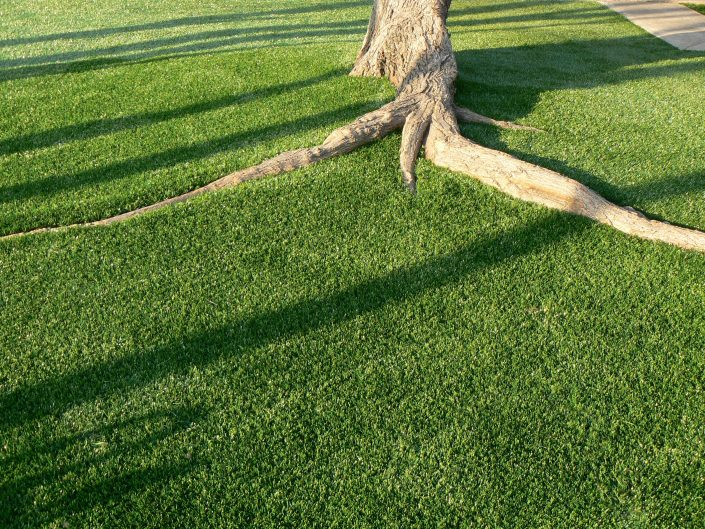 Synthetic Grass Pros Synthetic Grass Installation in Texas