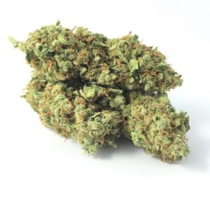 Buy Ak-47 strain | Ak-47 Indica Strain For Sale | Cheap Ak-47 strain Online