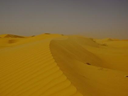 Sahara Desert, Mauritania