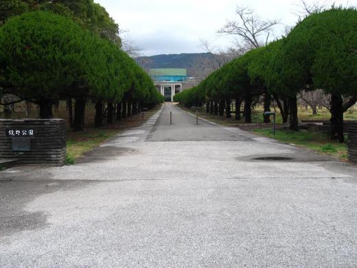 鏡野公園とタヌキ