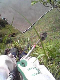 斜面での草刈り中