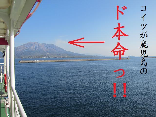 桜島フェリーで「桜島観光」立ち上る噴煙、降り注ぐ火山灰