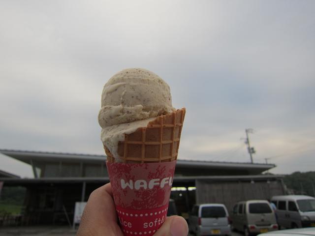 道の駅 ビオスおおがた 塩アイス