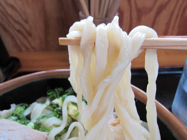 手打うどん吉川 武蔵野風肉汁うどん・ぶっかけスタイル(特大) 麺アップ