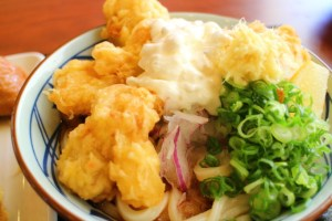 【高知】香南市の中華料理「鳳龍菜館」でランチ!(ラーメンなし回)