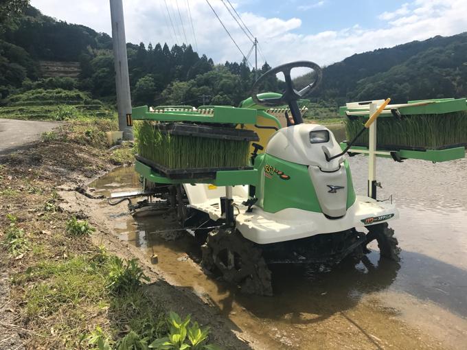 稲の植え方。乗用田植え機による「田植え」のコツ。