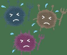 influenza-seizonkikan