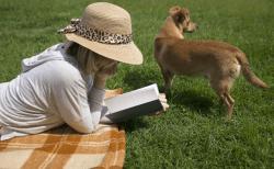 犬の嘔吐【茶色・白い泡・黄色・血など】の原因は?病気?