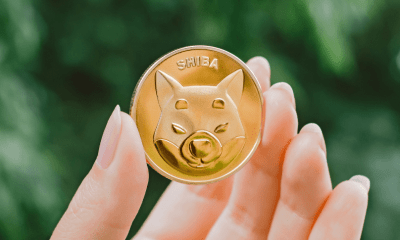 Some benefits of buying Shiba Coin Cryptocurrency.