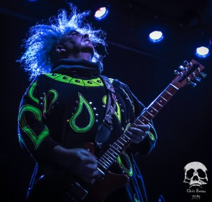 Melvins 8