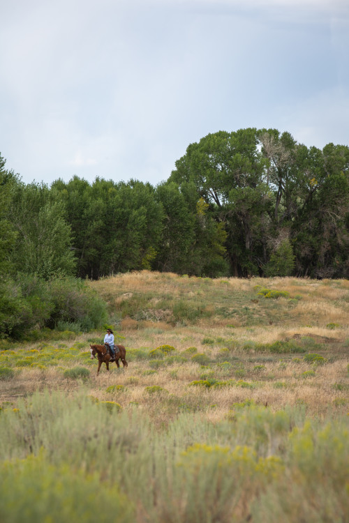Magee Homestead Brush Creek Ranch