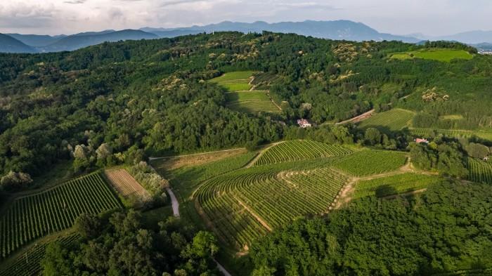 Attems - Friuli-Venezia-Giulia