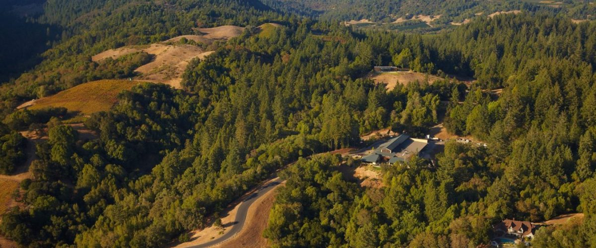 Gary Farrell Winery – Vineyards And Wines Of Distinction