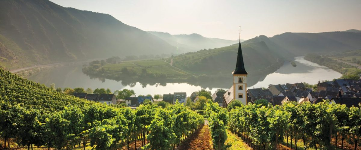 You Had Me At Pinot – Tasting The Great Pinots Of Germany