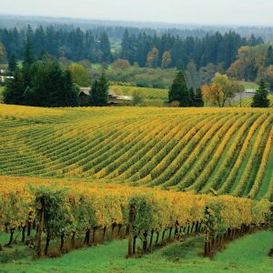 Unexplored Oregon