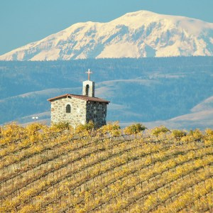 Red Willow Vineyards - Yakima Valley