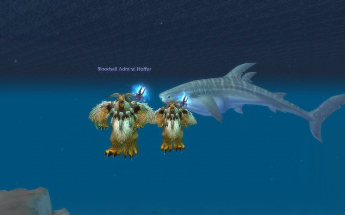 Moonkins and whale shark