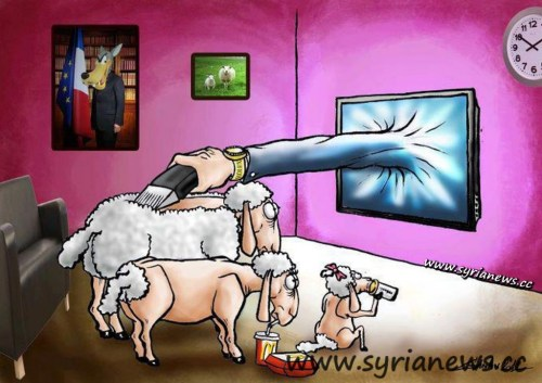 sheeple family