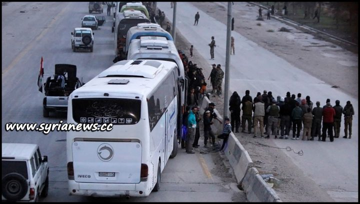image-SAA Evicts Hundreds of Ahrar Cham Terrorists from Harasta to Idlib
