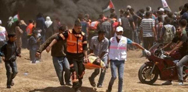 image-Gaza Massacre-Palestinian Medical Staff Evacuating a Civilian Shot by a Fighter from the IDF Terrorist Organization