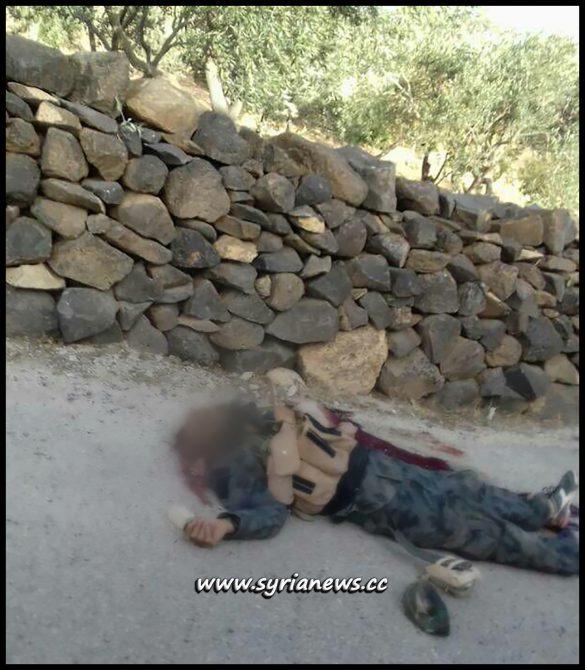 ISIS Terrorist Killed by SAA in Sweida
