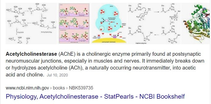 acetylcholinesterase AChE