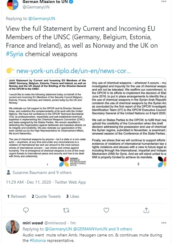 EU members of UNSC Germany, Belgium, Estonia, France and Ireland support of the OPCW