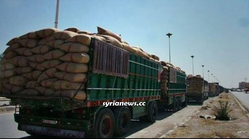 Trump forces smuggle stolen Syrian grains to Iraq