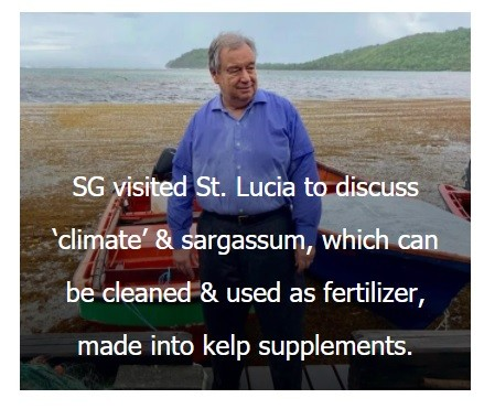 Colonialist Guterres supports OPCW lies, yells at St Lucians