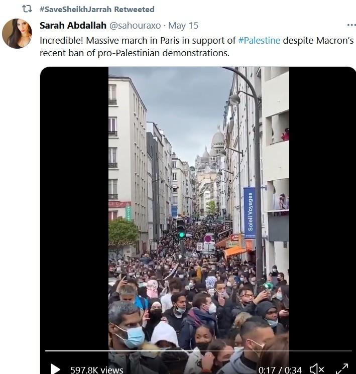 French demonstrators against Gaza bombings.