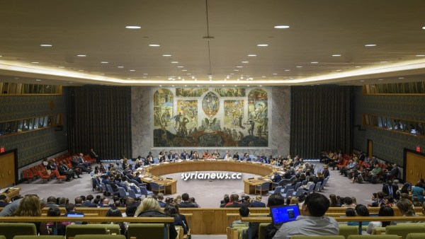 UNSC United Nations Security Council - Syria