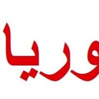 Aneesa Makhlouf, widow of late President Hafez al-Assad, passes away