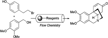 Solid Phase Chemistry in Flow Chemistry Systems, such as