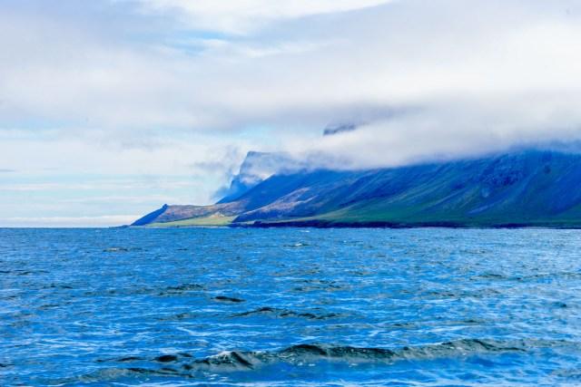 Fjordeinfahrt vom Reykjafjörður