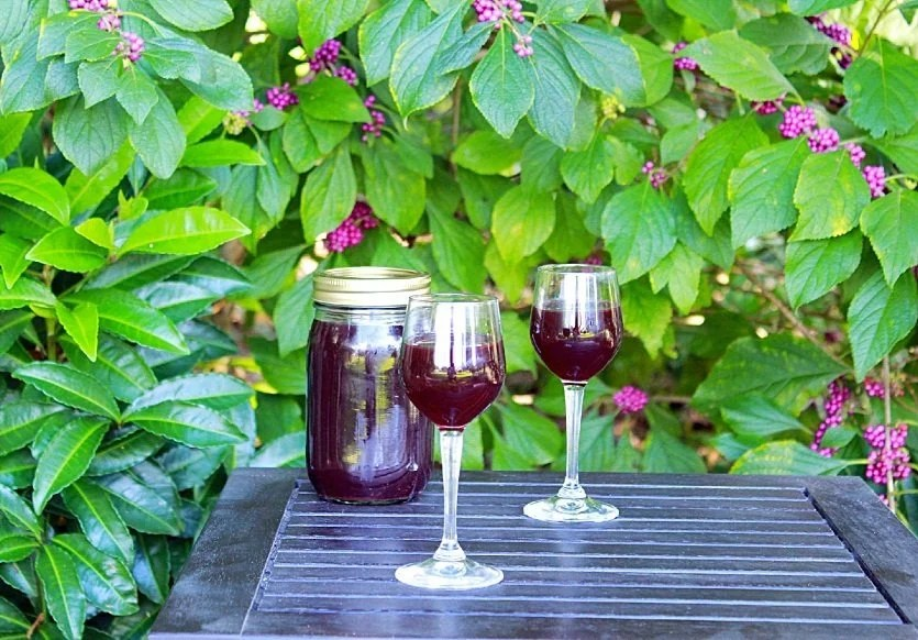 Blackberry Cordial. An early American beverage made from blackberries, herbs, spices and brandy. #blackberry #cordial #beverage #southernfood