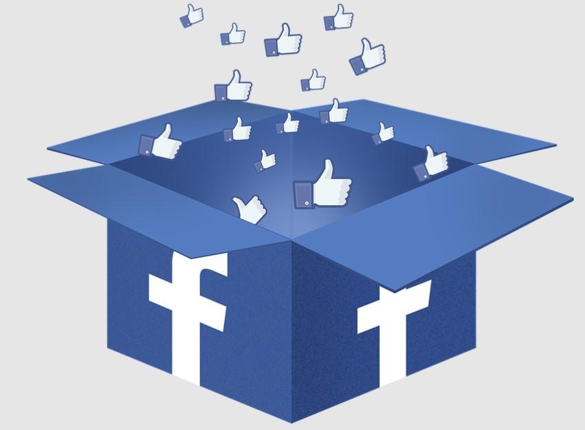Segnala una Pagina Facebook con Badge di verifica grigio o blu falso