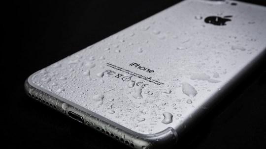 Cómo reparar tu teléfono celular dañado por agua
