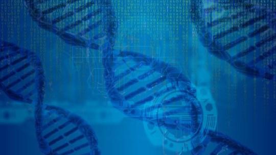Biología computacional o Bioinformática, promotoras de descubrimientos excepcionales