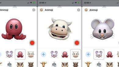 Photo of نظام تشغيل iOS 13 الجديد من آبل يحتوي على ثلاثة رموز Animoji جديدة مميزة