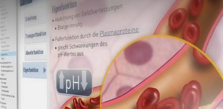 "iSMK Lernmodul ""Das Blut"""